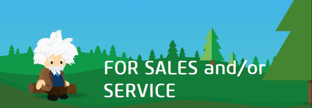 Einstein for Sales and Service-1
