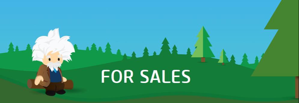 Einstein for Sales-2