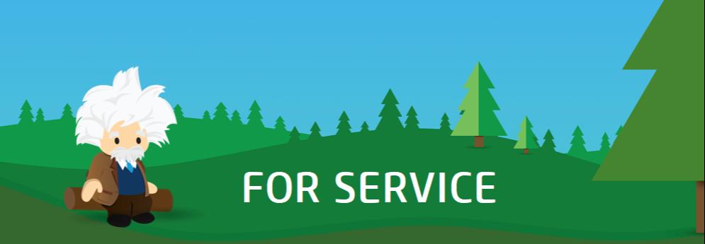 Einstein for Service-1