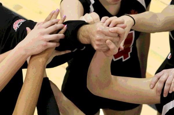 Team-handshake-Larry-Skelly