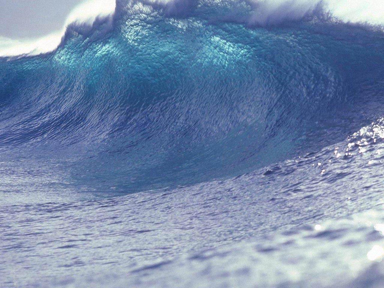 wave-11061.jpg