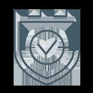 RiskManagement-vCISO-Online